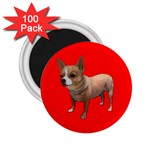 Create Your Own Custom 2.25 inch  Magnet (100 pack)