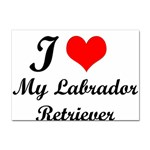 I Love My Labrador Retriever Sticker (A4)