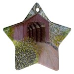 Coveredbridge300 Star Ornament (Two Sides)