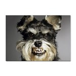 Animals Dogs Funny Dog 013643  Sticker (A4)