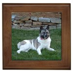 Akita Gifts, Dog Merchandise, Custom Dog Gift Ideas, Breed Information & Dog Photos
