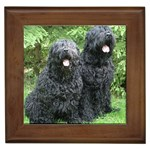 Black Russian Terrier Gifts, Dog Merchandise, Custom Dog Gift Ideas, Breed Information & Dog Photos