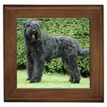 Bouvier Gifts, Dog Merchandise, Custom Dog Gift Ideas, Breed Information & Dog Photos