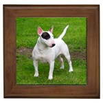 Bull Terrier Gifts, Dog Merchandise, Custom Dog Gift Ideas, Breed Information & Dog Photos