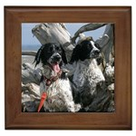 Field Spaniel Gifts, Dog Merchandise, Custom Dog Gift Ideas, Breed Information & Dog Photos