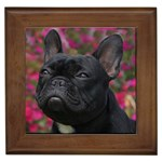 French Bulldog Gifts, Dog Merchandise, Custom Dog Gift Ideas, Breed Information & Dog Photos