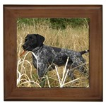 German Shorthaired Pointer Gifts, Dog Merchandise, Custom Dog Gift Ideas, Breed Information & Dog Photos
