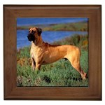 Great Dane Gifts, Dog Merchandise, Custom Dog Gift Ideas, Breed Information & Dog Photos
