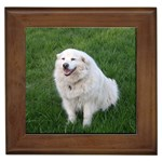 Great Pyrenees Gifts, Dog Merchandise, Custom Dog Gift Ideas, Breed Information & Dog Photos