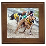 Greyhound Gifts, Dog Merchandise, Custom Dog Gift Ideas, Breed Information & Dog Photos