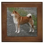 Shiba Inu Gifts, Dog Merchandise, Custom Dog Gift Ideas, Breed Information & Dog Photos