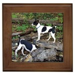 Smooth Fox Terrier Gifts, Dog Merchandise, Custom Dog Gift Ideas, Breed Information & Dog Photos