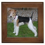 Wire Fox Terrier Gifts, Dog Merchandise, Custom Dog Gifts Ideas, Breed Information & Dog Photos