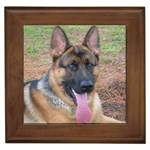 German Shepherd Gifts, Dog Merchandise, Custom Dog Gift Ideas, Breed Information & Dog Photos