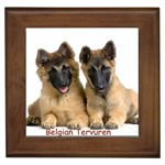 Belgian Tervuren Gifts, Dog Merchandise, Custom Dog Gift Ideas, Breed Information & Dog Photos