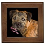 Border Terrier Gifts, Dog Merchandise, Custom Dog Gift Ideas, Breed Information & Dog Photos