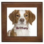 Brittany Gifts, Dog Merchandise, Custom Dog Gift Ideas, Breed Information & Dog Photos