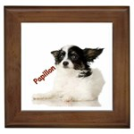 Papillon Gifts, Dog Merchandise, Custom Dog Gift Ideas, Breed Information & Dog Photos