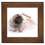 Pekingese Gifts, Dog Merchandise, Custom Dog Gift Ideas, Breed Information & Dog Photos