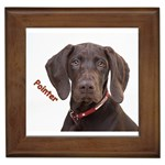 Pointer Gifts, Dog Merchandise, Custom Dog Gift Ideas, Breed Information & Dog Photos