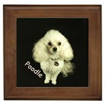Poodle Gifts, Dog Merchandise, Custom Dog Gift Ideas, Breed Information & Dog Photos