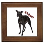 Whippet Gifts, Dog Merchandise, Custom Dog Gifts Ideas, Breed Information & Dog Photos
