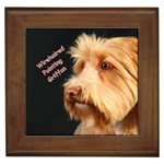 Wirehaired Pointing Griffon Gifts, Dog Merchandise, Custom Dog Gifts Ideas, Breed Information & Dog Photos