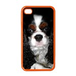 English Toy Spaniel Apple iPhone 4 Case (Color)