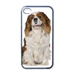 English Toy Spaniel Apple iPhone 4 Case (Black)
