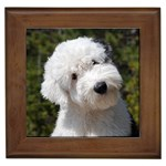 Old English Sheepdog Gifts, Dog Merchandise, Custom Dog Gift Ideas, Breed Information & Dog Photos