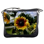Sun Flowers Messenger Bag