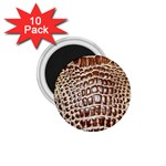 Ll Alligator Macro 1.75  Magnet (10 pack)