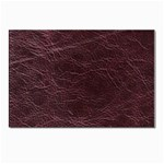 Leather Look & Skins  Capri Cranberry Postcard 4  x 6