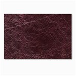 Leather Look & Skins  Capri Cranberry Postcard 5  x 7